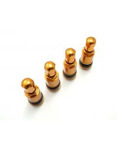 Aluventile PKW Gold 4x Seitlich